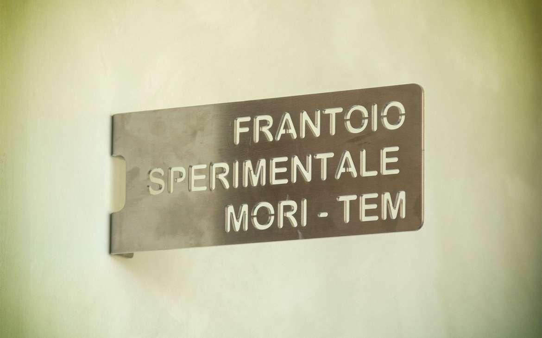 Nuovo impianto oleario sperimentale MORI-TEM